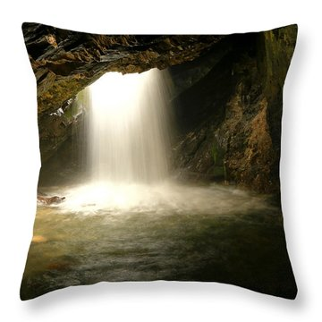 Donut Falls Throw Pillow by Johnny Adolphson