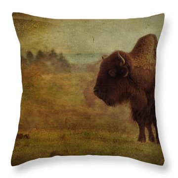 Doo Doo Valley Throw Pillow
