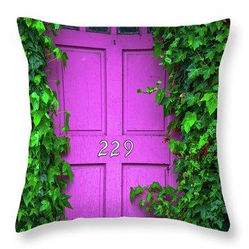 Door 229 Throw Pillow by Darren White