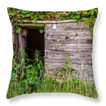 Throw Pillow featuring the photograph Door Ajar by Christopher Holmes