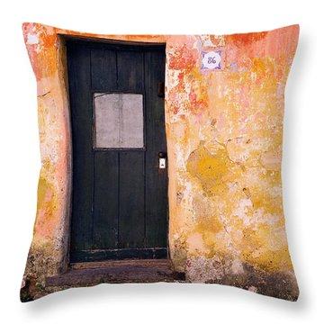 Door And Window 86 Throw Pillow