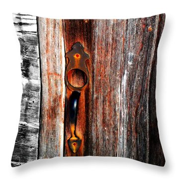 Door To The Past Throw Pillow by Julie Hamilton