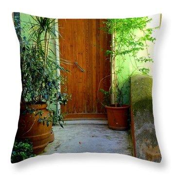 Doorway In Vernazza Throw Pillow