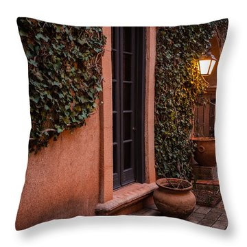 Doorway Through The Vines Throw Pillow