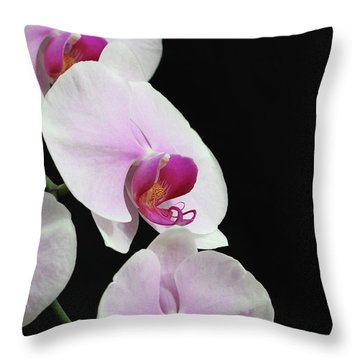 Doritaenopsis Mount Lip Fangtastic Orchid Throw Pillow