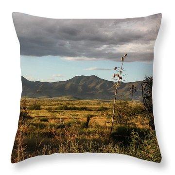 Dos Cabezas Grasslands At Dusk Throw Pillow