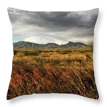 Dos Cabezas Grasslands Throw Pillow