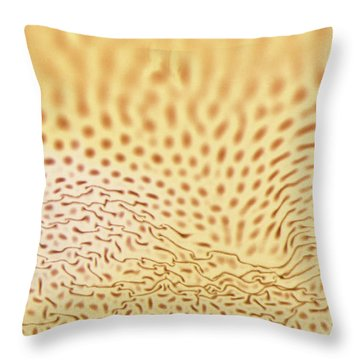 Dots And Lines Throw Pillow