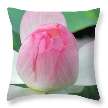 Dotus On The Lotus  Throw Pillow