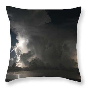 Double Throw Pillow