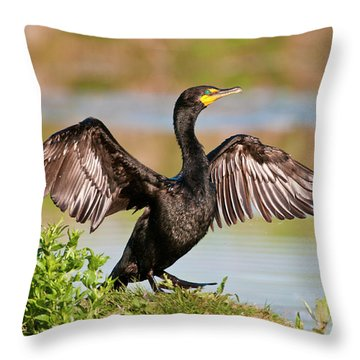 Double-crested Cormorant Throw Pillow by Gary Lengyel