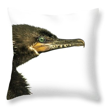 Double-crested Cormorant  Throw Pillow by Robert Frederick