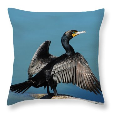 Double-crested Cormorant Spreading Wings Throw Pillow by Merrimon Crawford