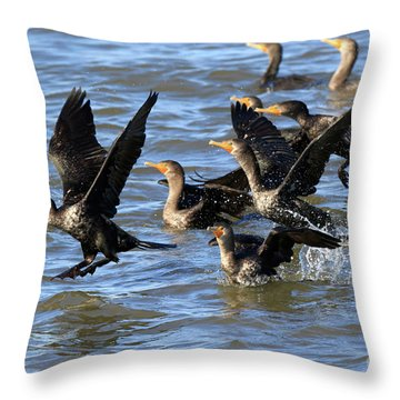 Double Crested Cormorants Throw Pillow by Louise Heusinkveld
