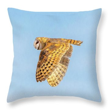 Double Crown Fly By  Throw Pillow
