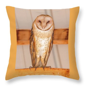 Double Crown Rest  Throw Pillow