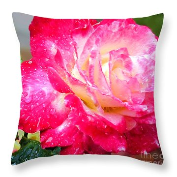 Double Delight Throw Pillow by Patricia Griffin Brett