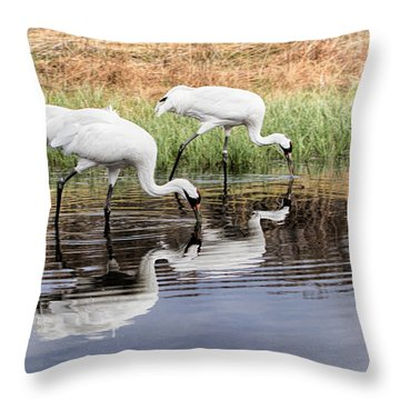 Double Dipping Throw Pillow
