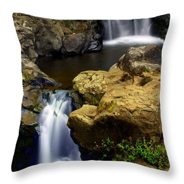 Double Drop Throw Pillow by Marty Koch