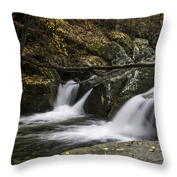 Double Flow Throw Pillow