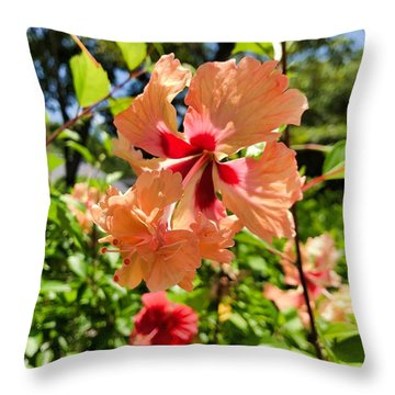 Throw Pillow featuring the photograph Double Headed Hibiscus by Brian Eberly