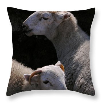 Double Portrait Throw Pillow by Harry Robertson