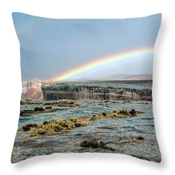 Double Rainbow Throw Pillow