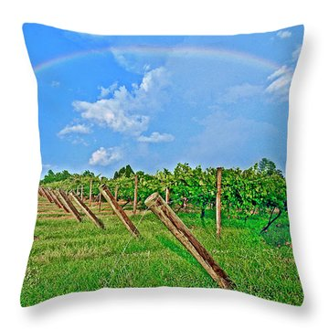 Double Rainbow Vineyard, Smith Mountain Lake Throw Pillow