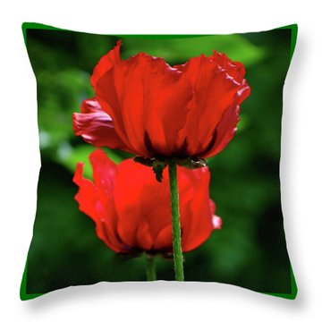 Double Red Poppies Throw Pillow