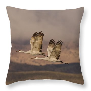 Double Sandhills In The New Mexico Sky Throw Pillow