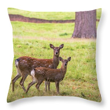 Throw Pillow featuring the photograph Double Take by Scott Carruthers