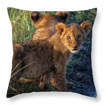 Throw Pillow featuring the photograph Double Trouble by Karen Lewis