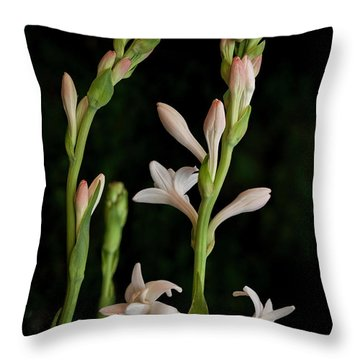 Double Tuberose In Bloom #2 Throw Pillow