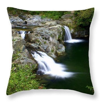 Double Twin 2 Throw Pillow by Marty Koch