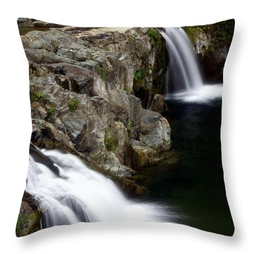 Double Twin Throw Pillow by Marty Koch