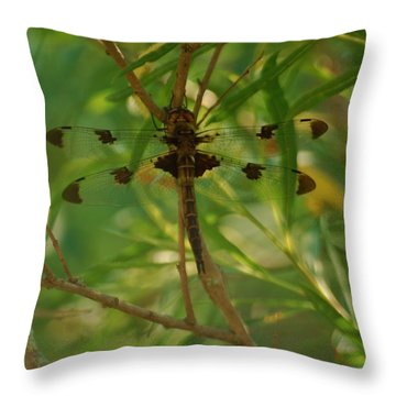Throw Pillow featuring the photograph Double Winged Dragonfly by Ramona Whiteaker