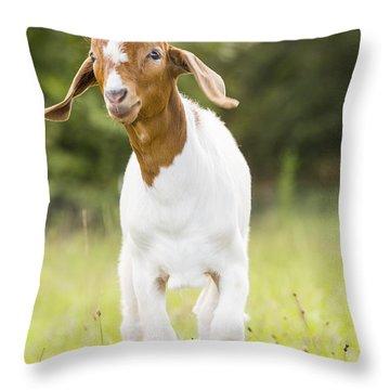 Dougie The Goat Throw Pillow