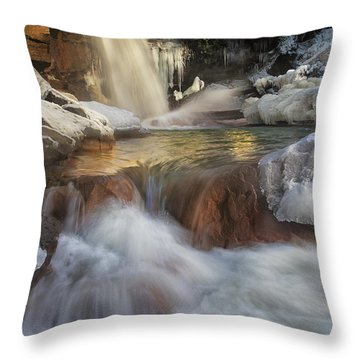 Douglas Falls Flow Throw Pillow