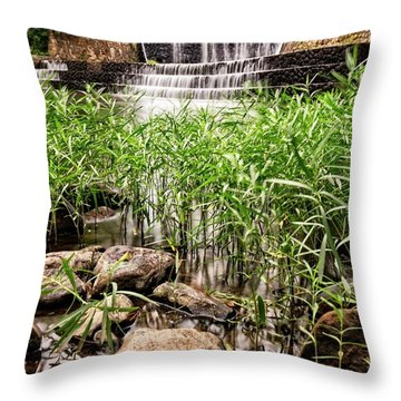 Throw Pillow featuring the photograph Douthat Lake Dam by Alan Raasch