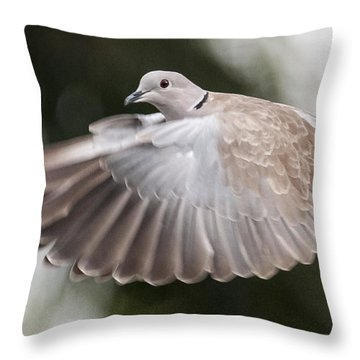 Throw Pillow featuring the photograph Dove Flight by Don Durfee