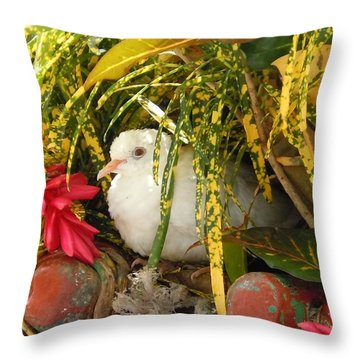 Dove In Jamaica Throw Pillow