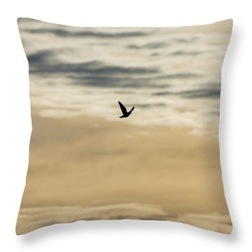 Dove In The Clouds Throw Pillow