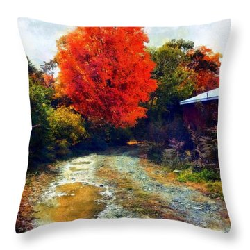 Throw Pillow featuring the photograph Down A Country Road - Autumn by Janine Riley