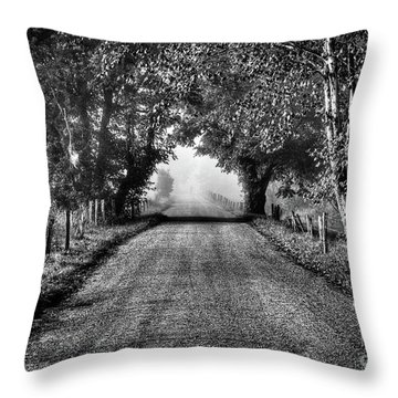 Throw Pillow featuring the photograph Down A Lonely Road by Douglas Stucky