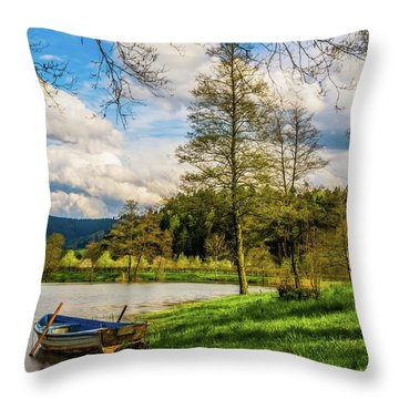Down By The Lake  Throw Pillow by David Dehner