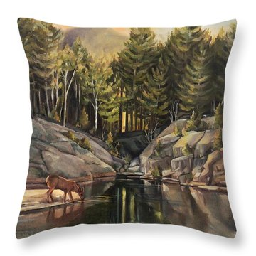 Down By The Pemigewasset River Throw Pillow