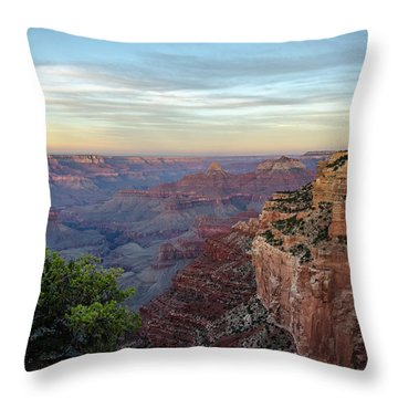 Down Canyon Throw Pillow