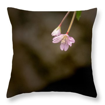 Down Throw Pillow
