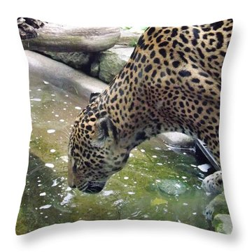 Down For A Drink Throw Pillow