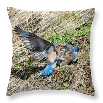 Throw Pillow featuring the photograph Down For The Count by Mike Dawson